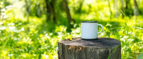 Stump with coffee mug